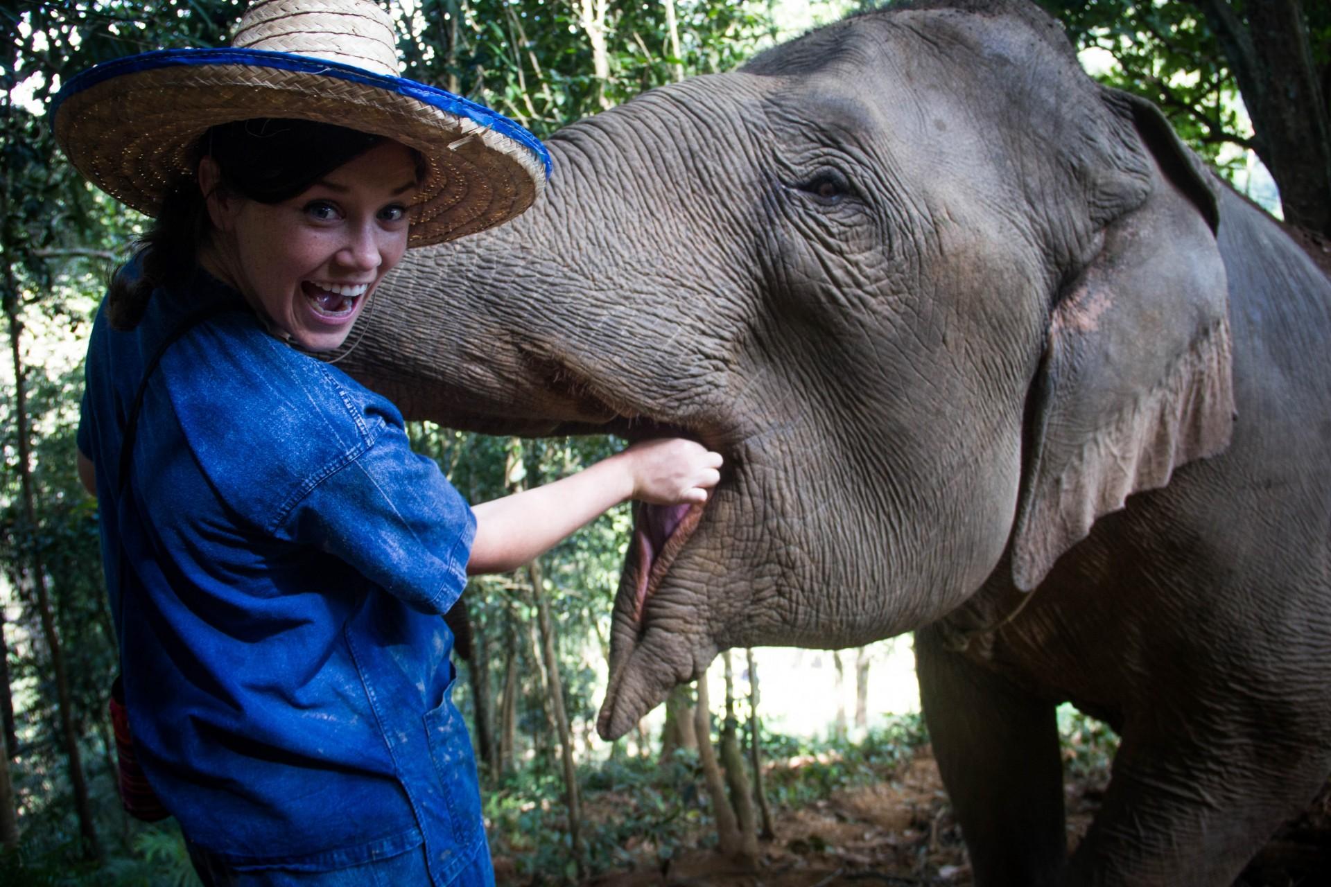 Fabuleux Elephant Sanctuary in Chiang Mai - A New Latitude SA66